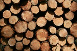 Air dried logs