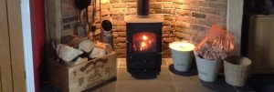 Kiln dried logs and kindling